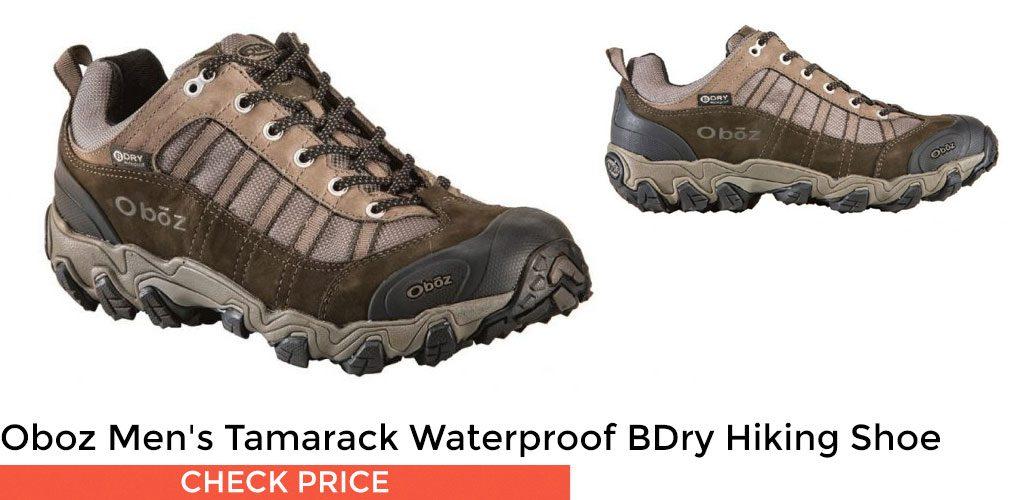 Oboz Men's Tamarack Low Waterproof BDry Hiking Shoe